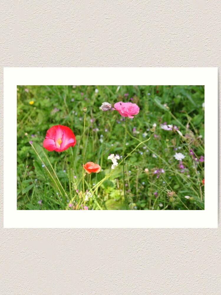 Alternate view of Spring flowers Art Print
