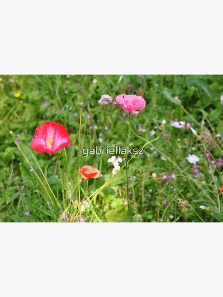 Spring flowers by gabriellaksz