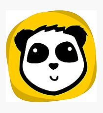 Little smile panda Photographic Print
