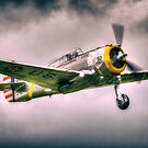Curtiss P-36C Hawk 'PA-50' by Nigel Bangert