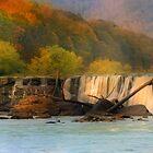Sandstone Falls by Steve  Taylor