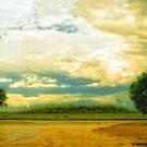 Don't Know Why There's No Sun Up In The Sky by ChasSinklier