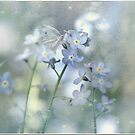 Forget Me Not by Crista Peacey