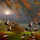 Fall In The Air by Igor Zenin