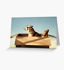 Jack and Hobbes Greeting Card