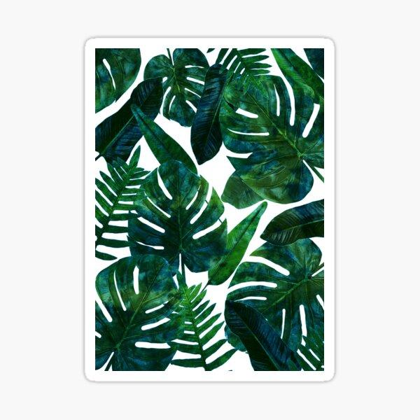 Perceptive Dream, Tropical Jungle Nature Botanical Watercolor Painting, Palm Monstera Bohemian Illustration Sticker