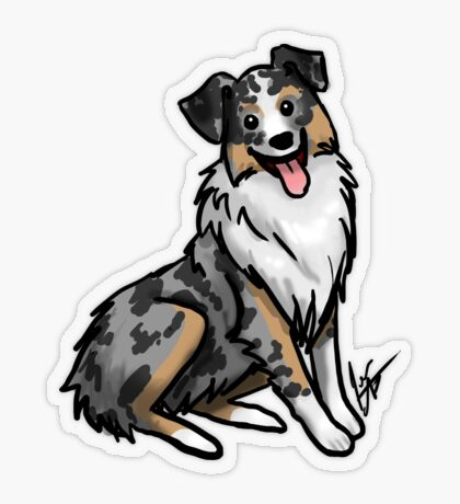 Australian Shepherd Transparent Sticker