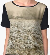 Farmstead Women's Chiffon Top