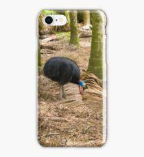 Forest Bird iPhone Case/Skin