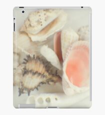 Shell collection iPad Case/Skin