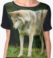 European Timber wolf Chiffon Top