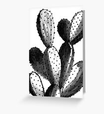 Black and White Cactus Greeting Card