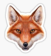 Red Fox Face Sticker