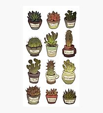 Cacti with social issues Photographic Print