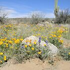 Mexican Poppies and Lupine by Kathleen Brant
