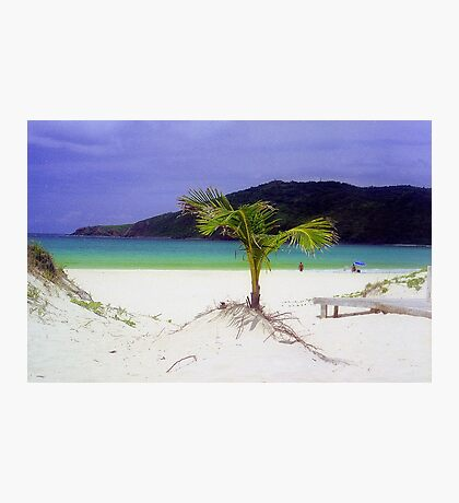 Flamenco Beach, Puerto Rico Photographic Print