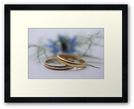 Wedding bands Love in a mist by portosabbia