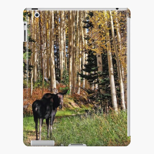 To Hike With A Moose Tablet Case iPad Snap Case