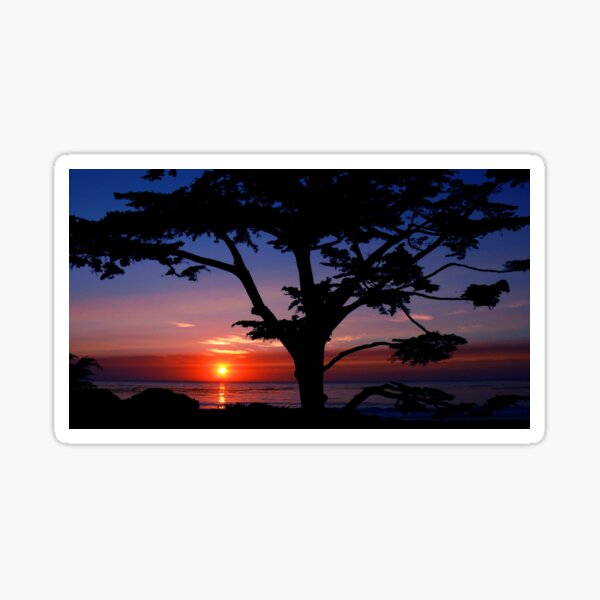 #243    Sunset From Scenic Sticker