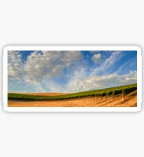 Vineyards Sticker