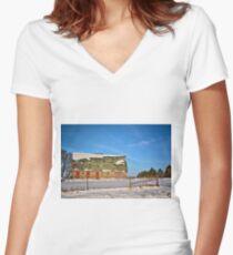 Empty Butler Barn Women's Fitted V-Neck T-Shirt