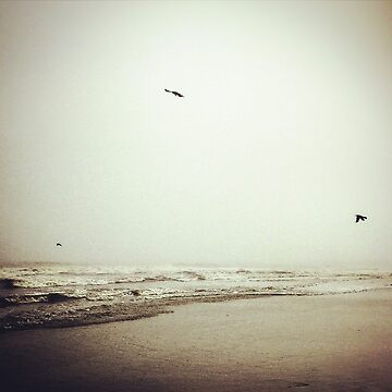 Christmas Eve - Folly Beach by AndShesGone