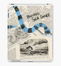 Banded Sea Snake iPad-Hülle & Klebefolie