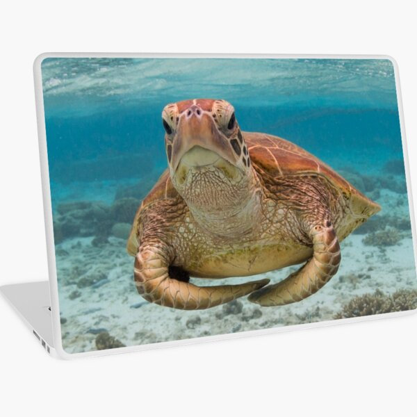 Turtle yoga pose Laptop Skin