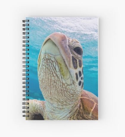 Turtle close-up Spiral Notebook