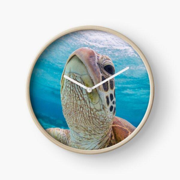 Turtle close-up Clock