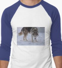 Snow Huskey Wolf Dog Howoooo Men's Baseball ¾ T-Shirt