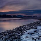 Fraser River West by Jean Poulton