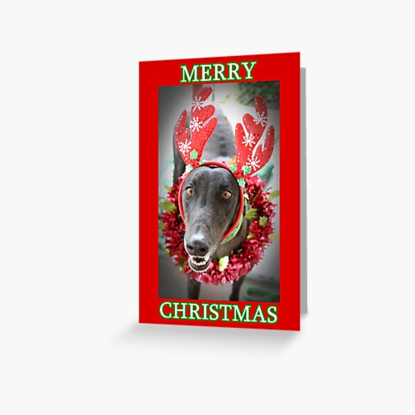 Merry Christmas from ROO Greeting Card