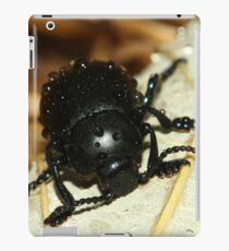 Bloody nose beetle in the rain. iPad Case/Skin