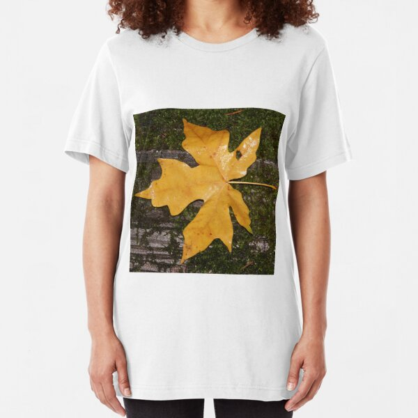 Autumn Leaves on Floor Women/'s All Over Graphic Contrast Baseball T Shirt