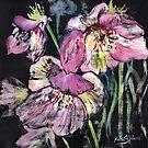 Lenten Roses by Ruth S Harris