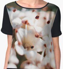 Blossoms  Chiffon Top