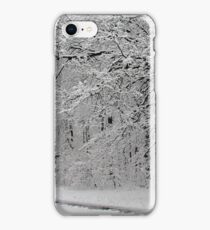 Snow in New York City  iPhone Case/Skin