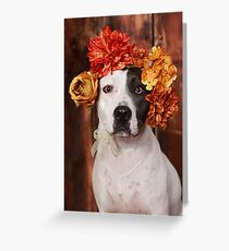 Pit Bull with flower crown Greeting Card