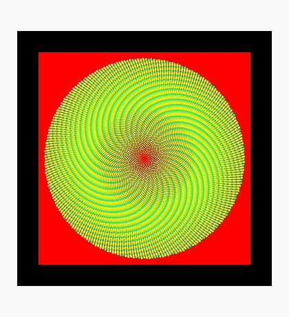 Phyllotaxis_020 Photographic Print