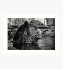 BROWN BEAR IN B&W Art Print