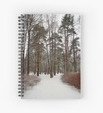 footpath in a snowy park Spiral Notebook