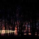 Sunrise in the Trump Forest .2 by Alex Preiss