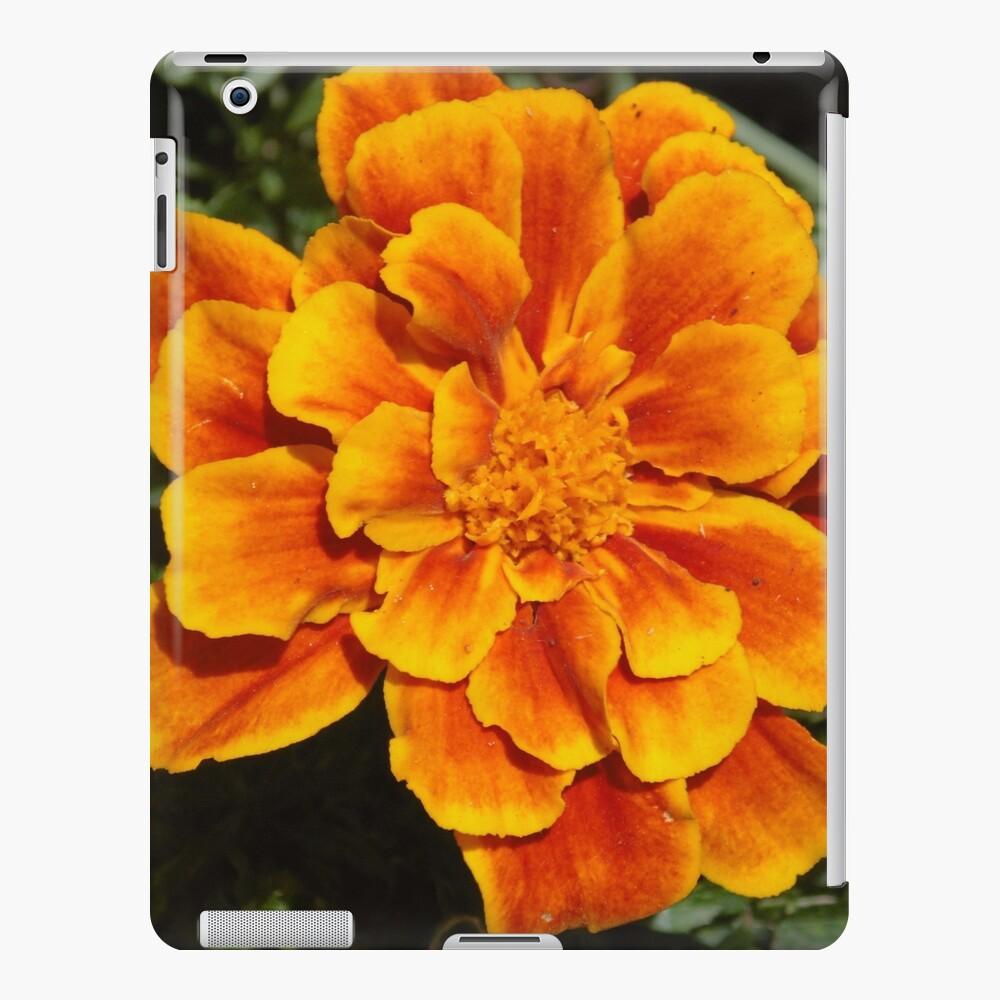 Hell meine Ringelblume iPad-Hülle & Skin