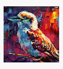 Kookaburra - sits in the old gumtree Photographic Print
