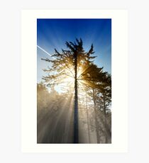 Sunrise at Rialto Beach. Art Print
