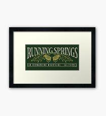 Running Springs Framed Print