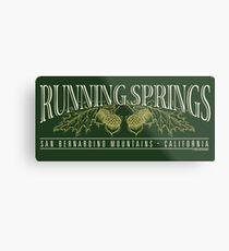 Running Springs Metal Print