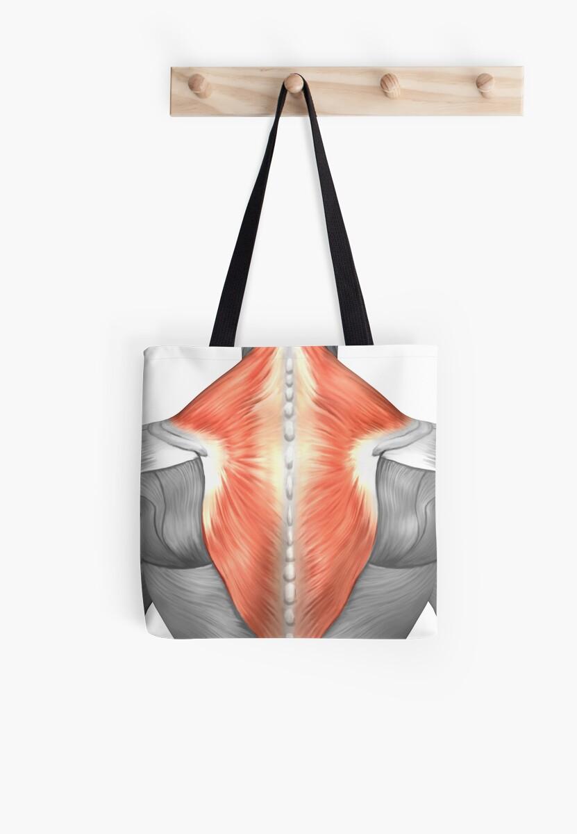 Bolsas de tela «Músculos de la espalda y el cuello.» de ...