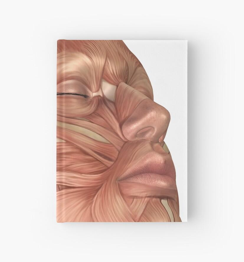 Cuadernos de tapa dura «Anatomía de los músculos de la cara humana ...
